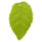 L60 Celery