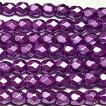 Lilac 50 pcs