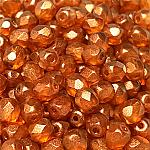 GT Orange - 50 pcs