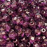 GT Purple - 50 pcs