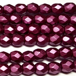 Bordeaux 50 pcs