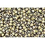 Hybrid Oxidized Clay apx 14g