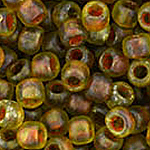 Hybrid Frstd Trans-Tort Shell Picasso apx 14g